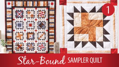 Star-Bound Sampler Quilt
