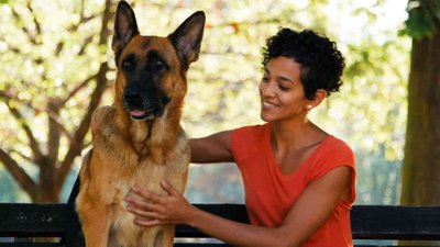 Dogs Helping People Live Normal Lives