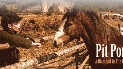 Pit Pony (Season 2)