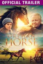 Orphan Horse: Trailer