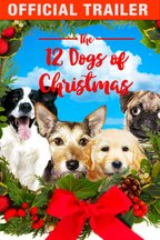 12 Dogs of Christmas - Official Trailer